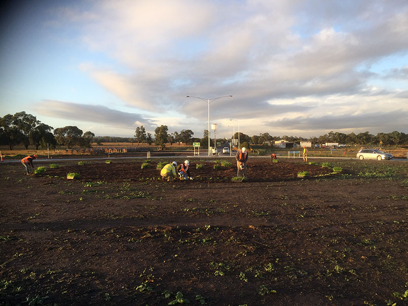 Abbotts Road landscape project